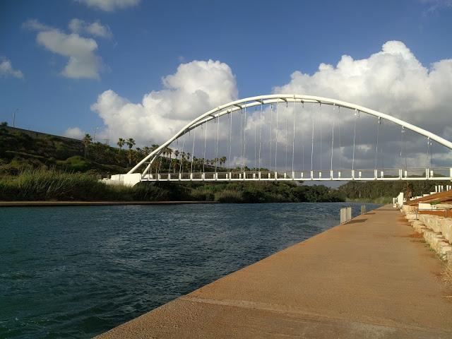 גשר הנבל פארק חדרה