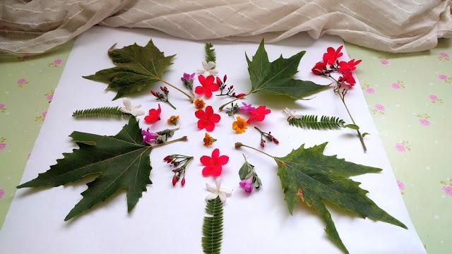 ייבוש פרחים על נייר סופג