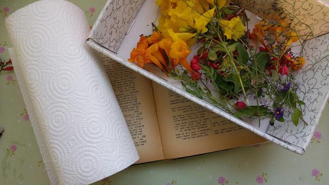 ייבוש פרחים בתוך ספר ישן