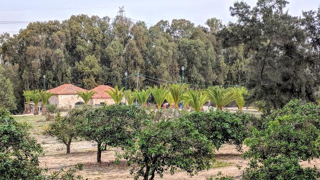 חוות חפציבה
