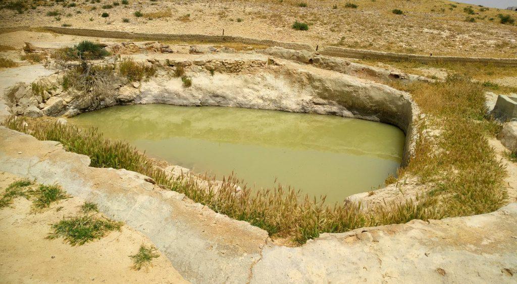 דני במדבר