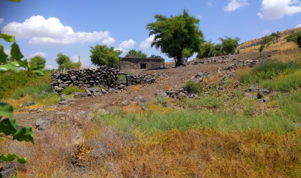 הגולן המערבי בית הכנסת העתיק בעין קשתות
