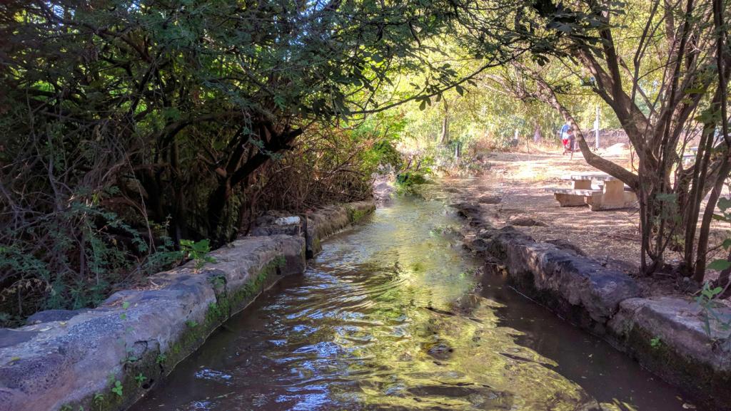פארק הירדן מסלולי הטיול