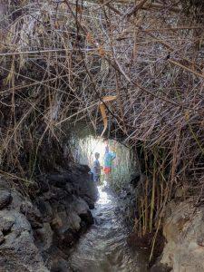 פארק הירדן מסלול אמת המים