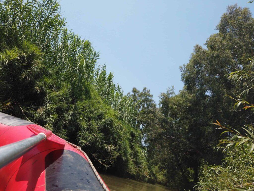 פארק הירדן אבוקאיק
