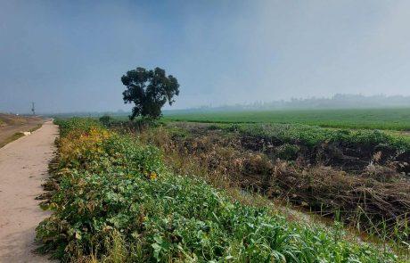 אטרקציות וטיולים בעמק יזרעאל – מהמזרח ועד המערב